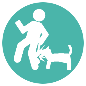 Dog Bites_icons